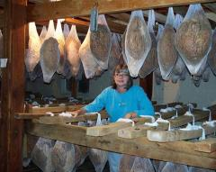 Nancy Jordon in t he Curing room with country hams from A.B. Vannoy Hams