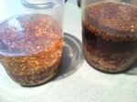 Inspired by Ben's mustard recipe I went home and made my own local mustard! - seeds soaking here....
